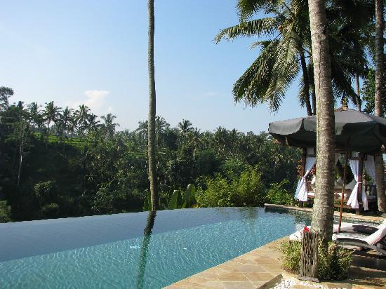 Viceroy Bali: pool