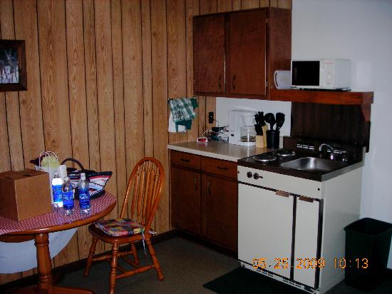 Swiftcurrent Lodge On The River: The stove/sink/cabinet/storage area in cabin