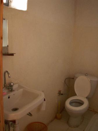 Heaven Guest House: toilets and shower