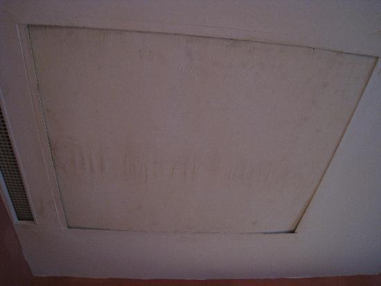 Gratz Park Inn: Moldy Ceiling