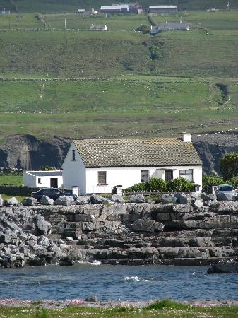 Moloney House: view from the shoreline