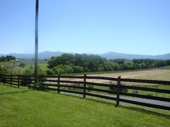 Piney Hill Bed & Breakfast: view from the yard