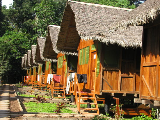 Пуэрто-Мальдонадо, Перу: huts at Ecolodge Amazonia
