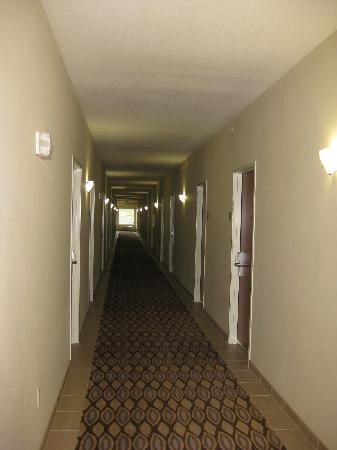Best Western Plus Peppertree Inn at Omak: hallway