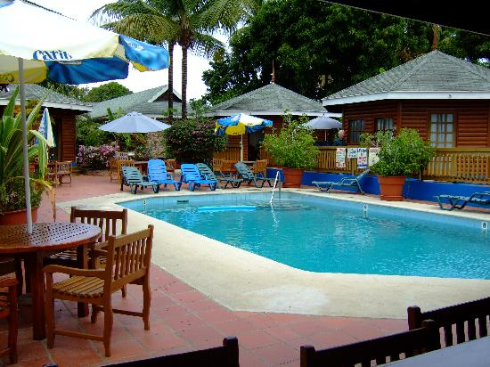 Toucan Inn: Pool from Bonkers