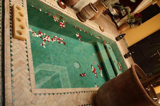 Riad Aguaviva: la piscina