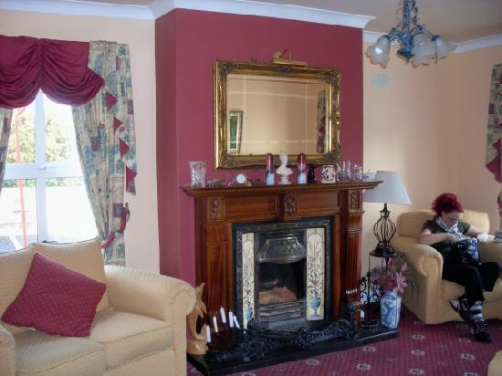 Blarney Vale Bed and Breakfast: The common room - so cozy!