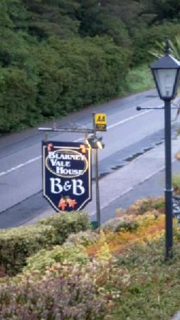 Blarney Vale Bed and Breakfast: Blarney Vale sing taken from car park - off the road - great location!