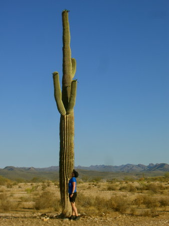 Scottsdale, Αριζόνα: 5 feet mom and her cactus
