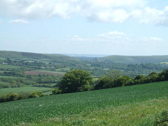 Bradle Farmhouse: View over the farm to Corf Castle