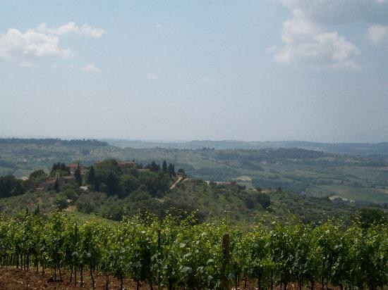 Bicycle Tuscany : views from the ride