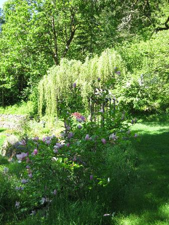 Brookside Inn on Abbey Road: Some of the gardens at Brookside Inn