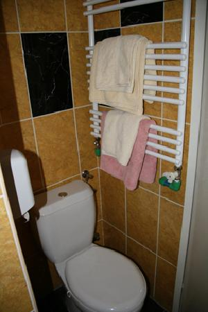 Hotel Tragos : Toilet and towel rack behind door