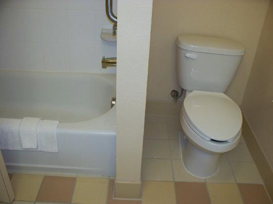 Fairfield Inn & Suites Marianna: Bathroom