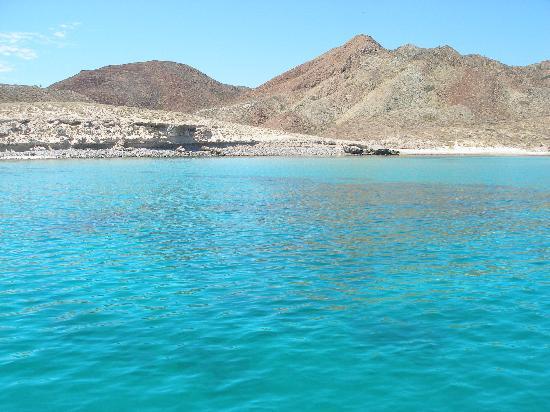 El Tiburon Casitas: Emerald water off Isa Carmen-Roosterfish Territory!