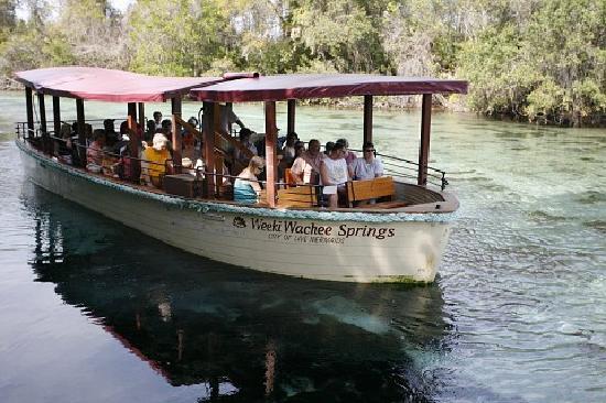 Weeki Wachee Springs: The river Boat