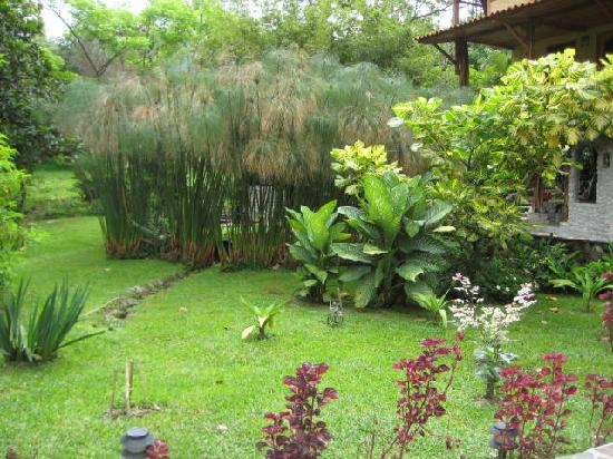 Casa Di Pietra: the garden