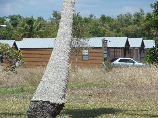 Glades Haven Cozy Cabins: The gray truck is our cabin. This view is from everglades.