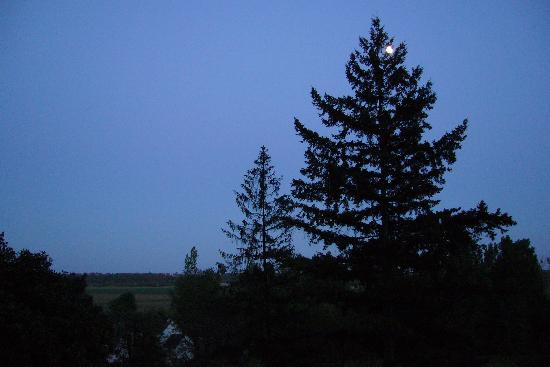 La Paquerie: Listen to the birds