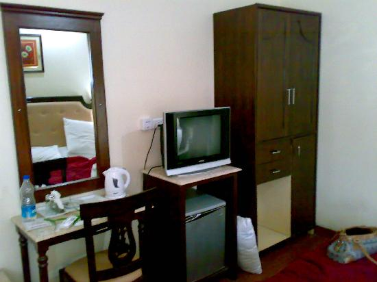Hotel Shiraz Regency: TV