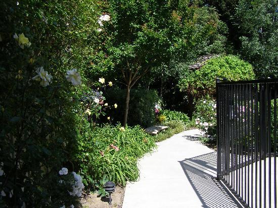 Best Western Plus Elm House Inn : Garden pic #1