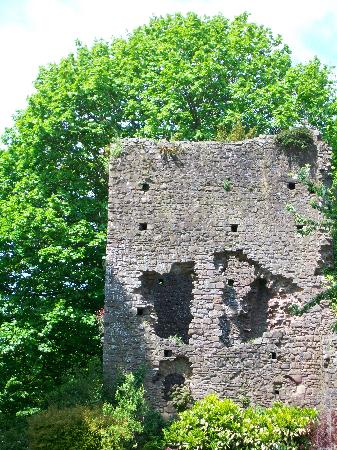 Tiverton Castle: Lovely old walls encompass the gardens