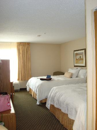Hampton Inn Battle Creek: As you enter the room