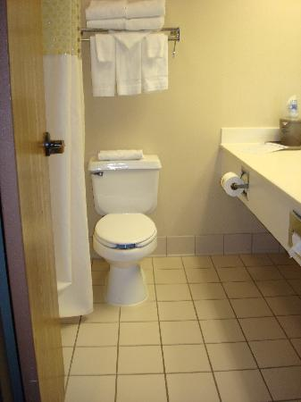 Hampton Inn Battle Creek: Bathroom