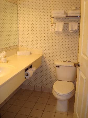 Days Inn Grayling: Small bathroom