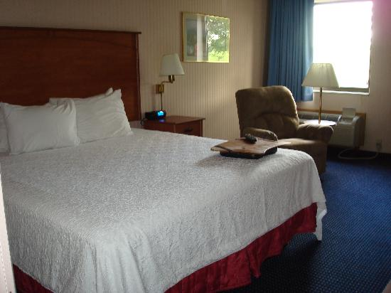 La Quinta Inn & Suites Detroit Metro Airport: bed