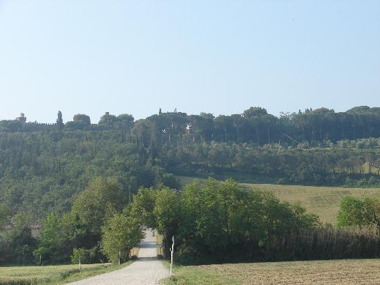 Castello Di Oliveto : Castle in Background