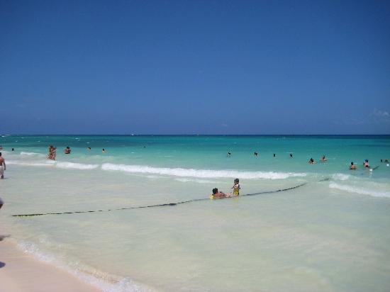 Hotel Nina Playa Del Carmen Tripadvisor