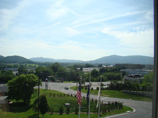 Fairfield Inn & Suites Roanoke North: View from our room