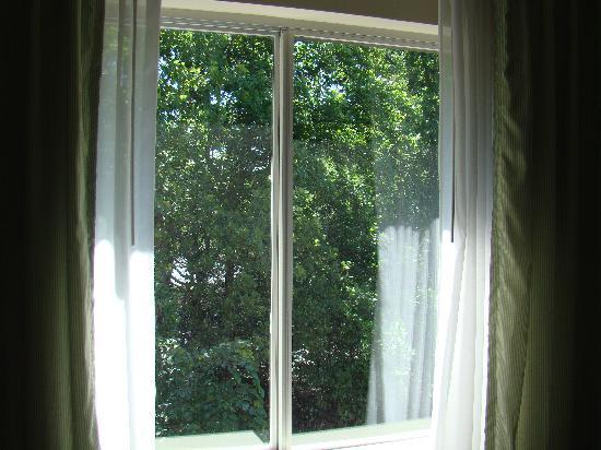 Fairfield Inn & Suites by Marriott Atlanta Perimeter Center: View from room