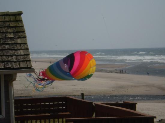 Best Western Plus Lincoln Sands Oceanfront Suites: Kites