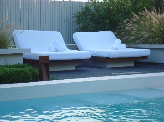 Arbol Casa Loft : pool