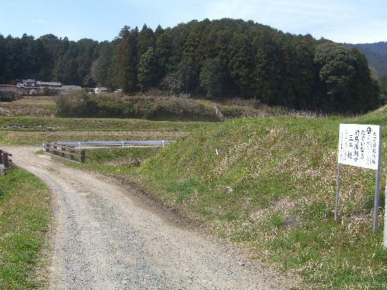 Nagashino historic battlefield : 南方の主戦場です。山縣方は騎馬の機動性を利用して更に南方から迂回したものと思われます。