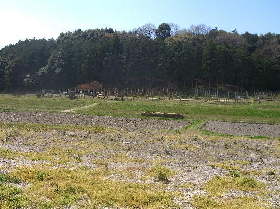 Nagashino historic battlefield: 武田方から連吾川そして背後の丘陵部が徳川家康の本陣です。