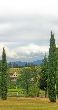 """Discover Lake Tahoe Wine and Harvest Tour: """"Tuscan"""" view from Produce Market"""
