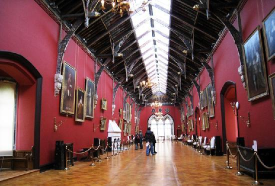 Château de Kilkenny : ze picture room