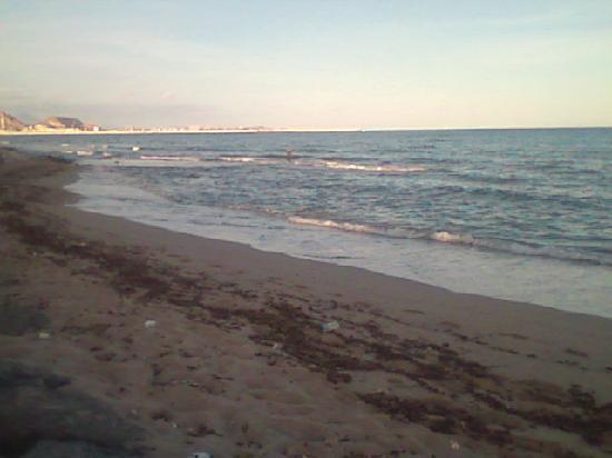 Ibis Alicante Elche : Across the tracks