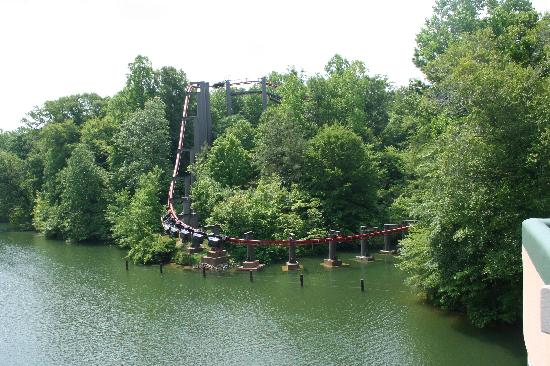 Busch Gardens Williamsburg: The Big Bad Wolf