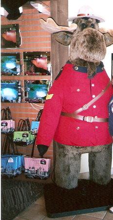 Souvenir City Headquarters: Large Moose at Souvenir City