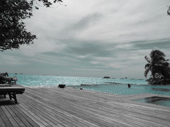 Taj Exotica Resort & Spa: Infinity pool