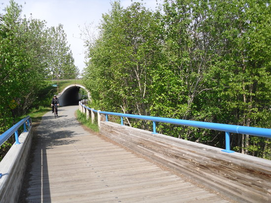 ‪Tony Knowles Coastal Trail‬