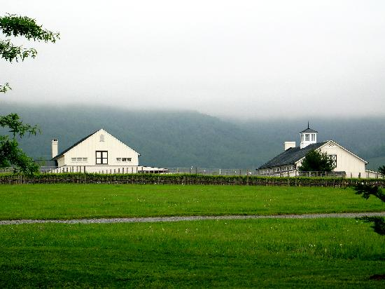 The Inn at Sugar Hollow Farm: King Family Vineyards