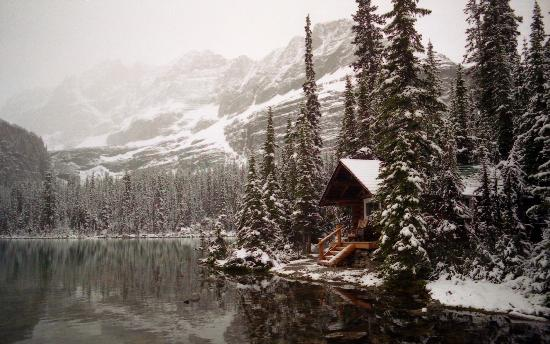 Lake O'Hara Lodge : Cabin on Lake O'hara