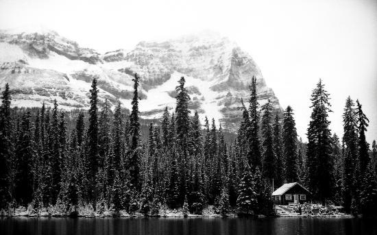 """Lake O'Hara Lodge: Lake O""""hara"""