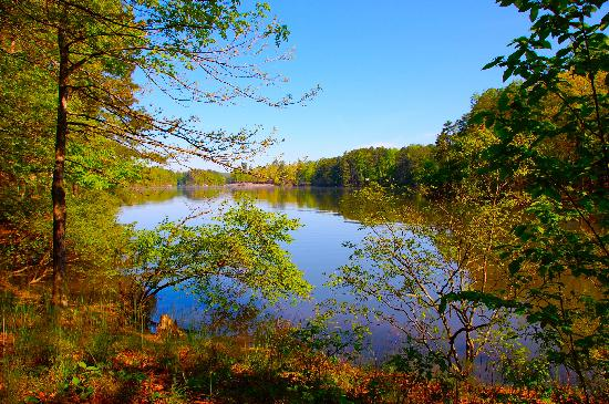 Stone Mountain Family Campground: View of the lake