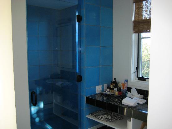 Room 8 - Fun Blue Shower Tile - Picture of Hotel Saint Cecilia ...